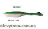 /Rainbow Trout SSA25332